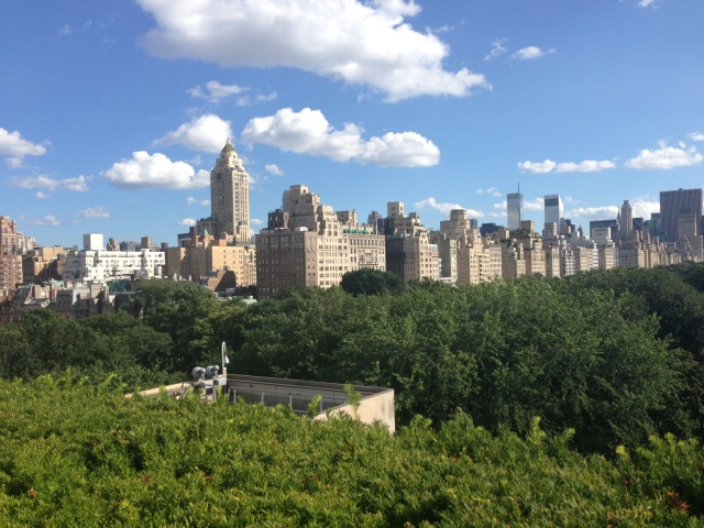 Central Park from the Met. Or maybe Central Park from my photographer bird friends. I'll never tell.